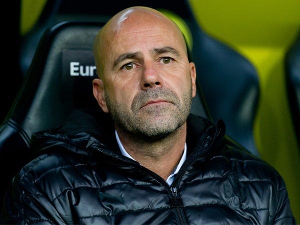 Peter Bosz Pasrah Jika Dipecat Borussia Dortmund