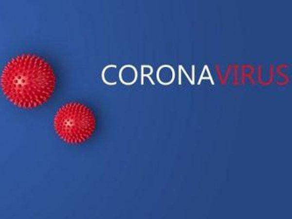 Virus Corona Masuk Indonesia, Laga Persija Kontra Persebaya Ditunda