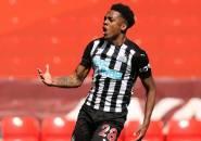 Rio Ferdinand Pertanyakan Sikap Arsenal Pinjamkan Joe Willock ke Newcastle