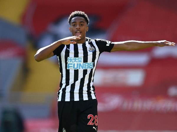 Arsenal meminjamkan Joe Willock ke Newcastle United