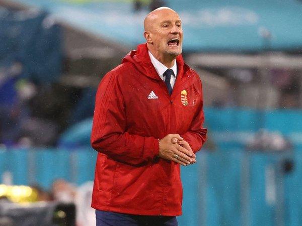Pelatih timnas Hungaria, Marco Rossi.