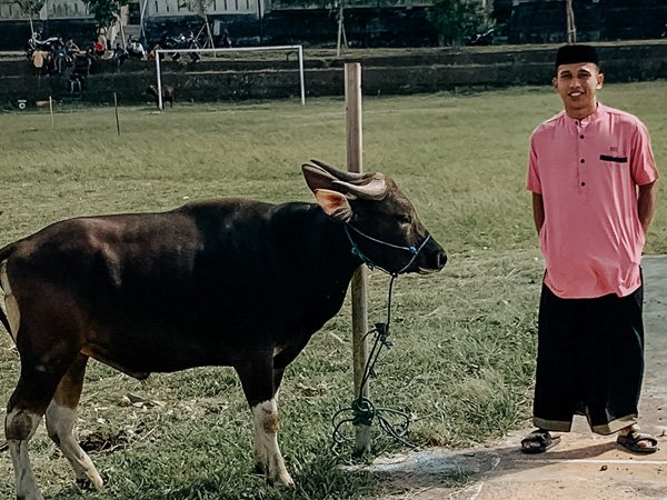 Irfan Jaya merayakan Idul Adha 1442 H di kampungnya, Makassar