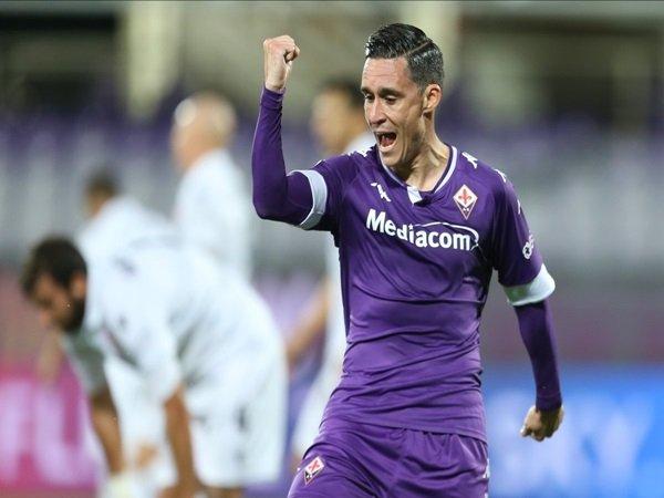 Fiorentina akan pinjamkan Callejon