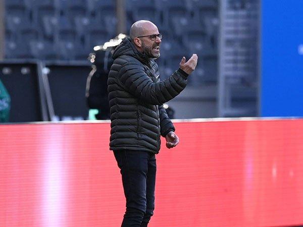 Peter Bosz anggap derby Saint-Etienne vs Lyon lebih dari sekadar tiga poin