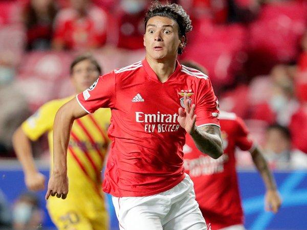 Penyerang Benfica, Darwin Nunez.